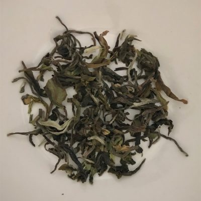 Jungpana Spring Wonder First Flush 2019 Darjeeling